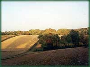 Działka, rolna, budowlana, pole, Sulów